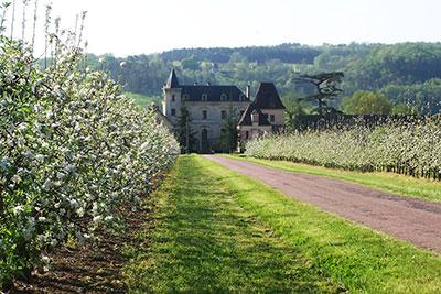 Domaine de La Vitrolle, location de vacances dans un manoir à Limeuil en Dordogne Périgord